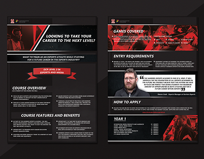 Harriers Esports college course leaflet
