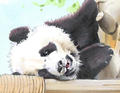 Meet Zoo Berlin. Book illustration