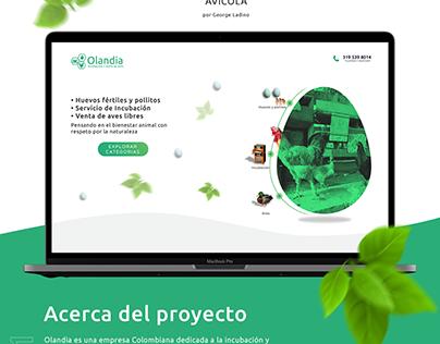 Diseño y desarrollo pagina web