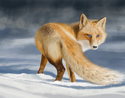 Tatya's Fox Watercolor