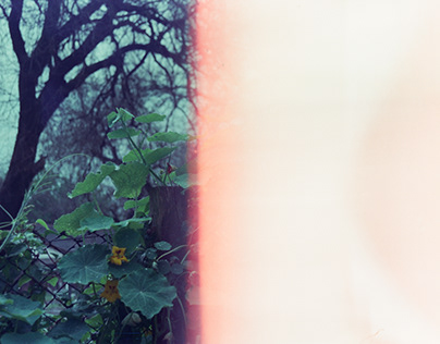 First of the roll & light leaks