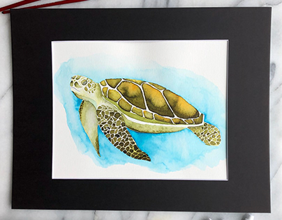 Sea Turtle Watercolor, Personal Art