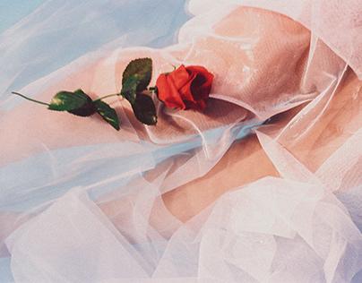 "Serie ""Rosas"""