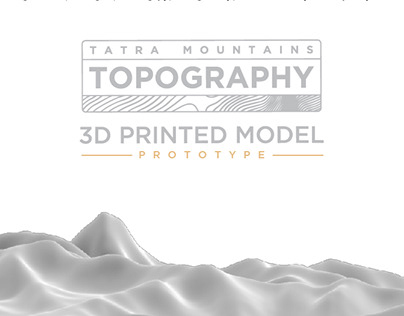 Topography 3D Printed Model