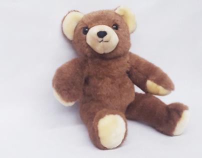Teddy Bear Project
