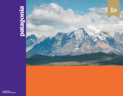 Patagonia - Interaction Design