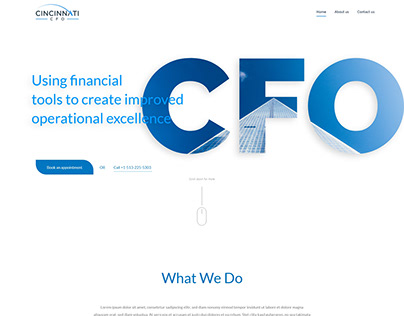 Clean Homepage for a CFO Service Business