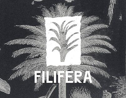 Filifera