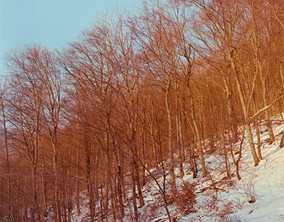 Snow V3