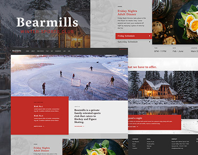 Winter Sports Club Web design