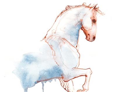 Konji - ilustracija