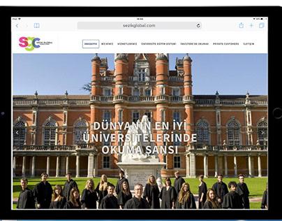 sezikglobalconsulting web site design