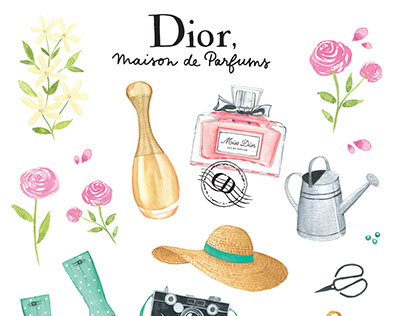 Illustrations for Dior Parfums