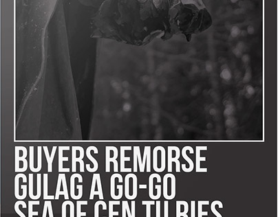 Buyers Remorse/ Gulag a Go-Go/ Sea of centuries Poster