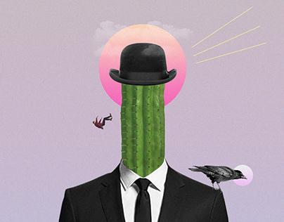 Mr Cactus.