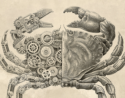 Mechanical / Biological [Crustacean Study]