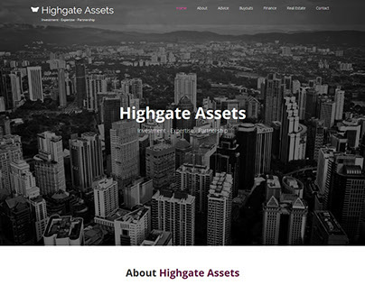 Financial Company Promotional Website