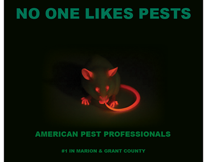 Mock Pest Control YellowPages Ad