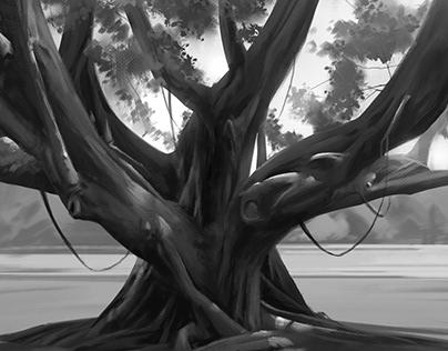 Tree Studies