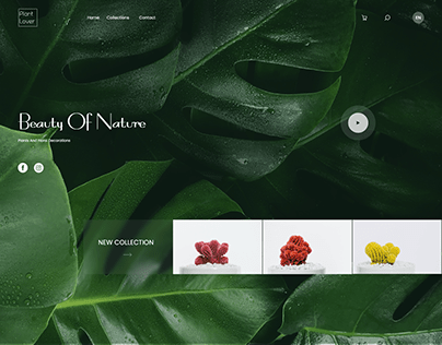 Plants and Flowers - online shopping