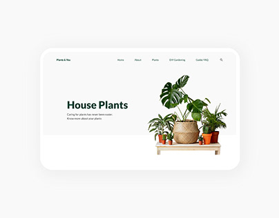 Plants & You