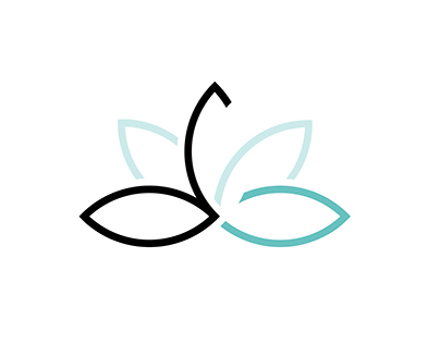 WySpa (logo)