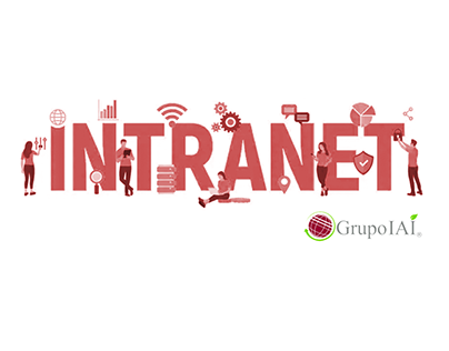 Intranet and Administration System Development