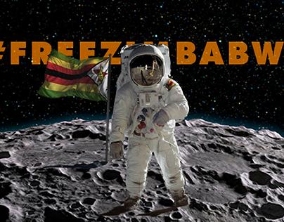 Free Zimbabwe