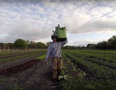 Sweetwater Organic Community Farm Documentary