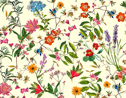 Petit Floral Pattern