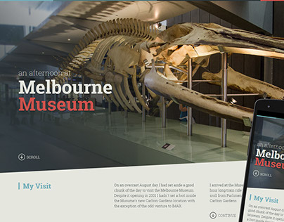 An Afternoon at Melbourne Museum