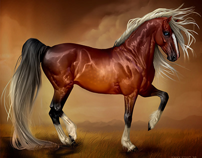 Horse Art Over the Years