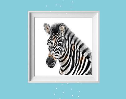Black and white zebra modern art