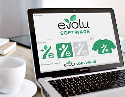 Brand Dev / UI Elements for evolu software