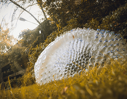 Geodesic Dome Shelter