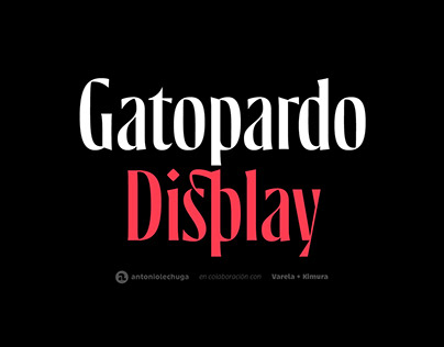 Gatopardo Display