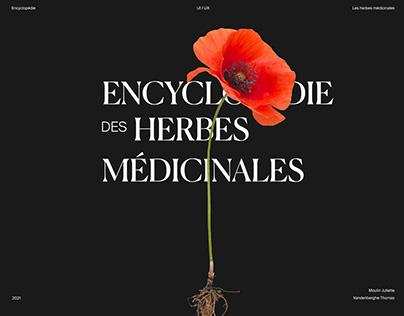 Medicinal plants encyclopedia - UX/UI