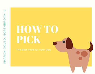 Picking Food for Your Dog | Sharon Gould Northbrook IL