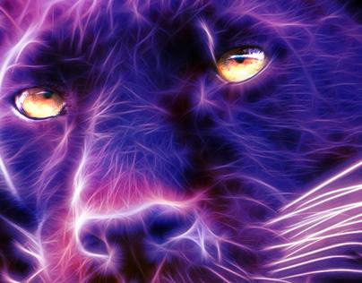 Aurora Panther