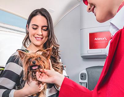 AVIANCA / TRAVEL SMART Aircraft cabin