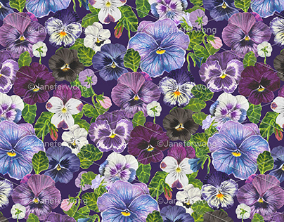 watercolor pansy flowers - purple mix