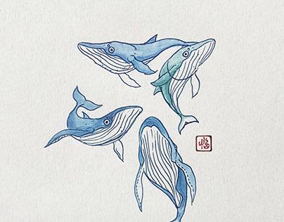 Whale Doodles (Gel + Copic)