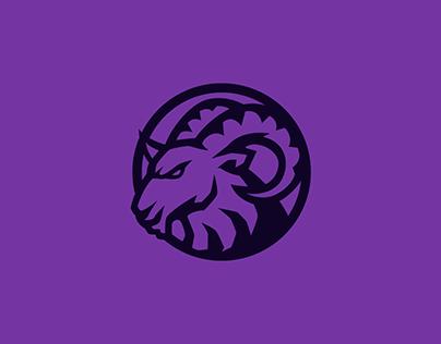 Anbizion Esports (redesign)