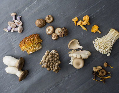 Nutritional benefits of eating mushrooms