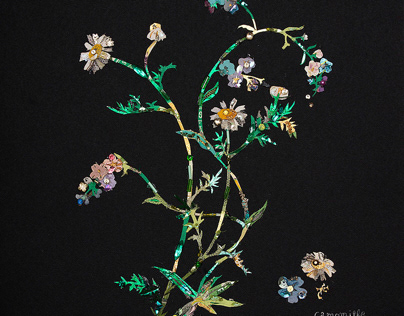 """Flowers2 """" chamomile,forget-me-not""""etc.."""
