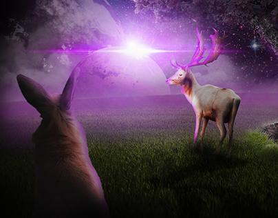 Fantasy World - Photoshop manipulation