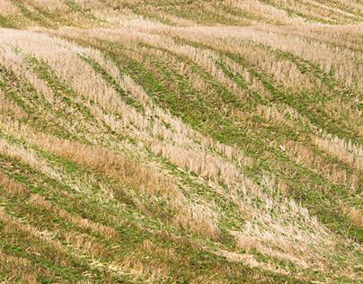 Agricultural Fabrics