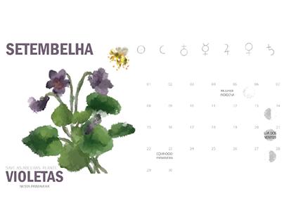 Salve as Abelhas | Calendário Ilustrado