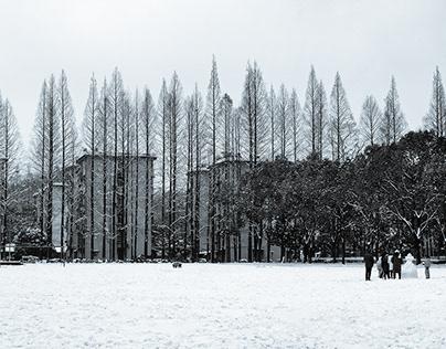 Hometown's Winter