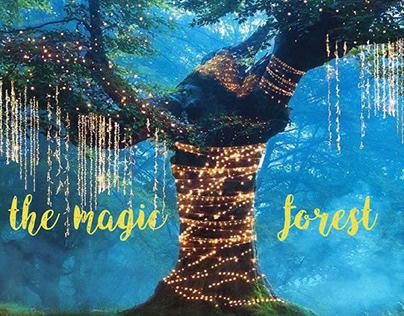 the magic forest (ჯადოსნური ტყე)